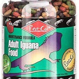 Rep-Cal Maintenance Formula Adult Iguana Food with Fruit