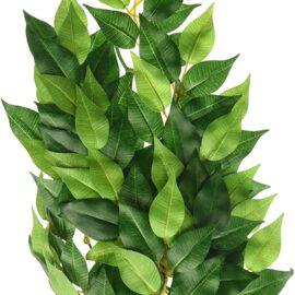 Exo Terra Silk Terrarium Plant, Medium, Ficus