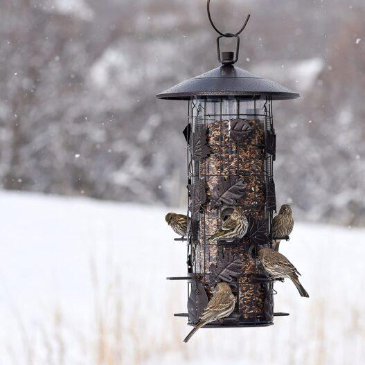 Perky-Pet 337 Squirrel-Be-Gone III Wild Bird Feeder
