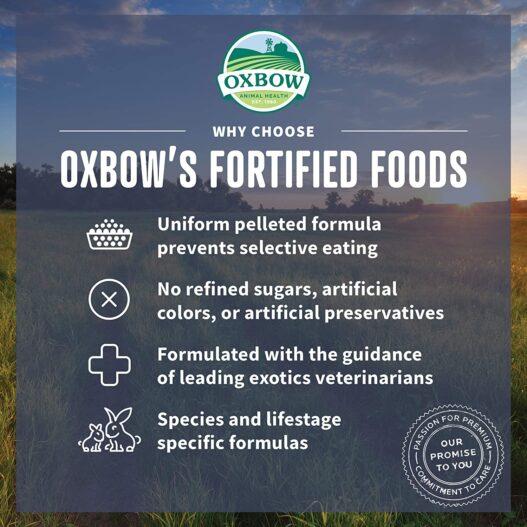 Oxbow Essentials Adult Rat Food